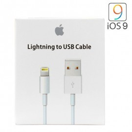 Apple Cable Usb a Lightning Original – Iphone(1m)-Blanco